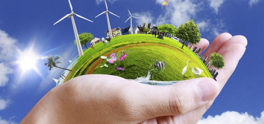 La labor medioambiental del Latón de La Fueva