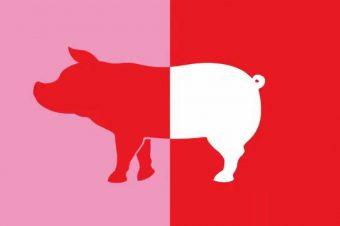 ¿La carne de cerdo es roja o blanca?