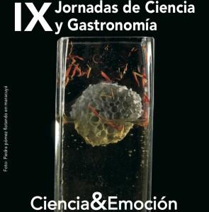 Cartel de las IX jornadas de ciencia y gastronomía