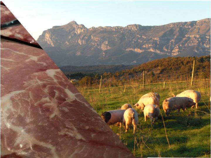 laton carne baja en grasas saturadas